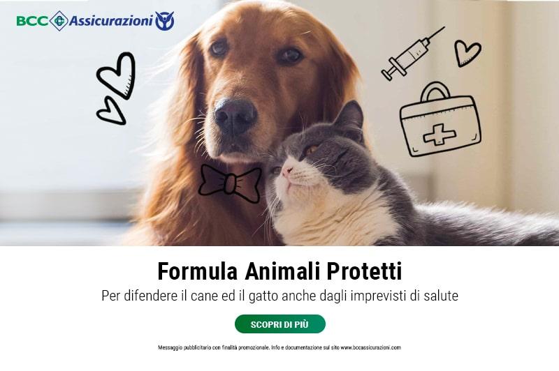 Animali protetti